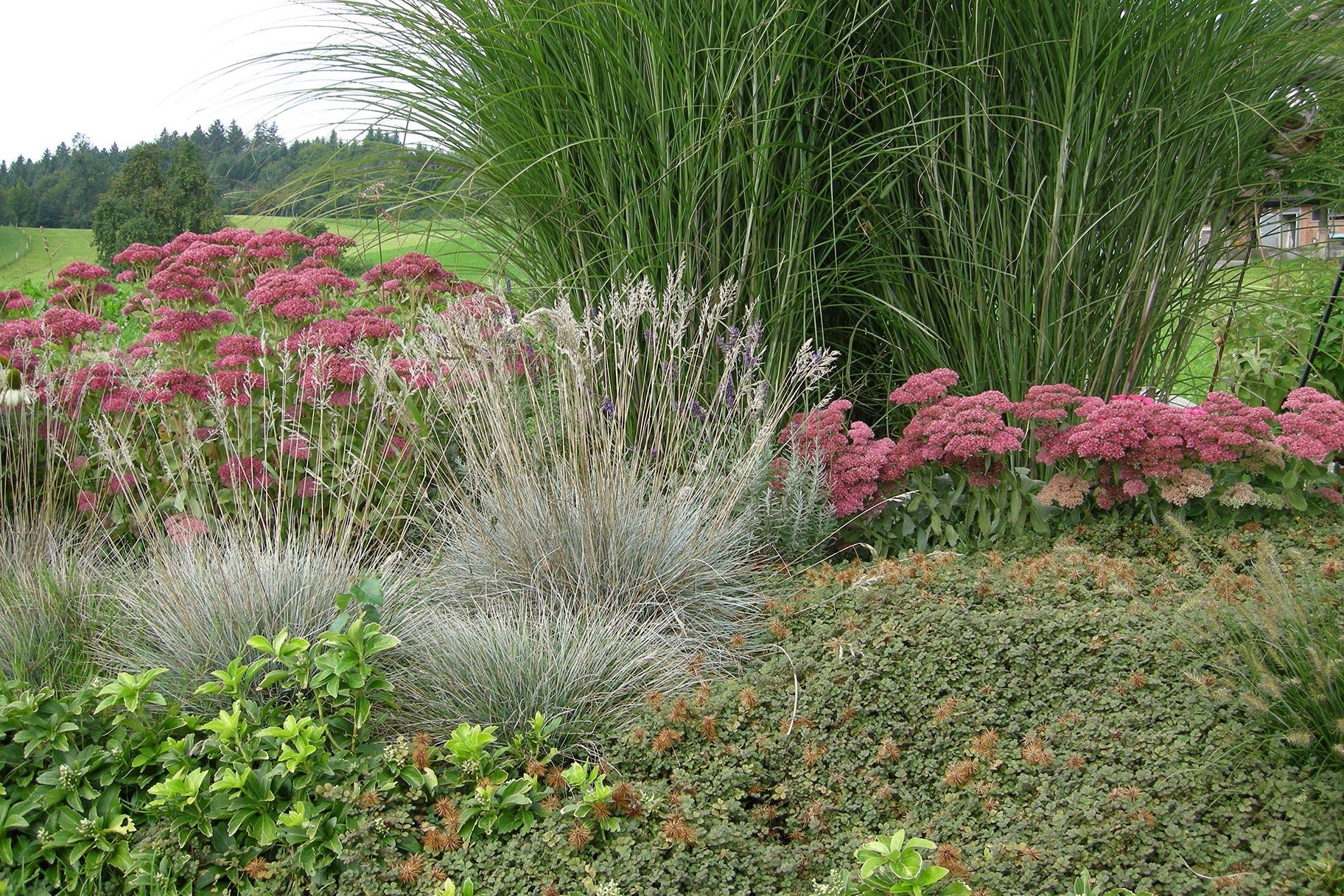 bogo-garden-spissen-4
